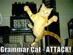 Grammar Cat 4